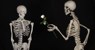 عشق و رابطه عاشقانه