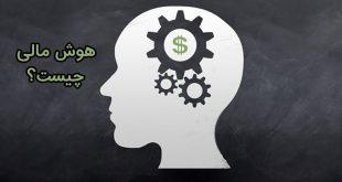 هوش مالی و دارایی
